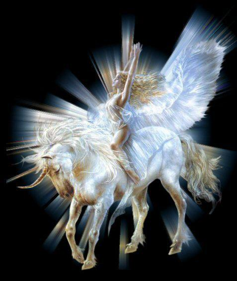 Angel wings and Unicorn | Angel wings and Unicorns