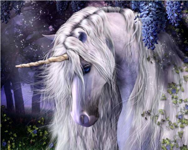 Beautiful white horse paintings - photo#26